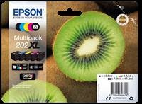 Multipack Epson 202XL